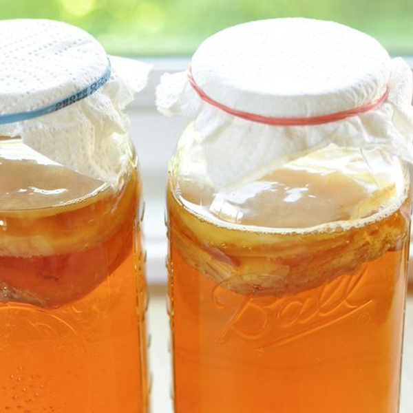 How to make Kombucha at home?